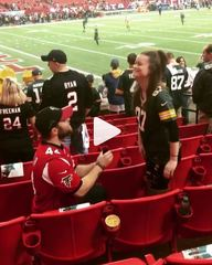Falcons fan proposes to Packers fan