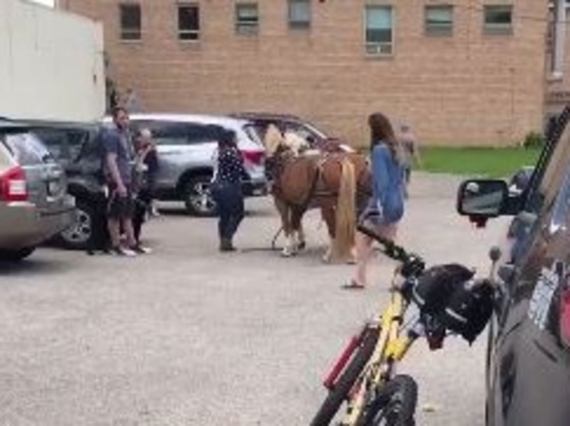 Startled ponies injure 3 at Wisconsin parade