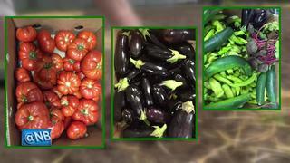 'Grow a Row for St. Joe's' helps feed the hungry