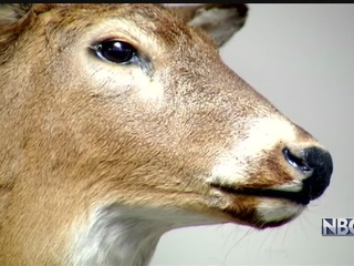 Farm quarantined as deer tests positive for CWD