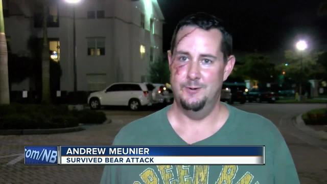 Bear Attacks Packers Fan in Florida