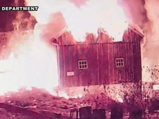 Several animals die in barn fire