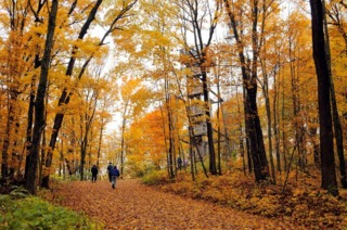 Travel Wisconsin's 'fall color report' now live